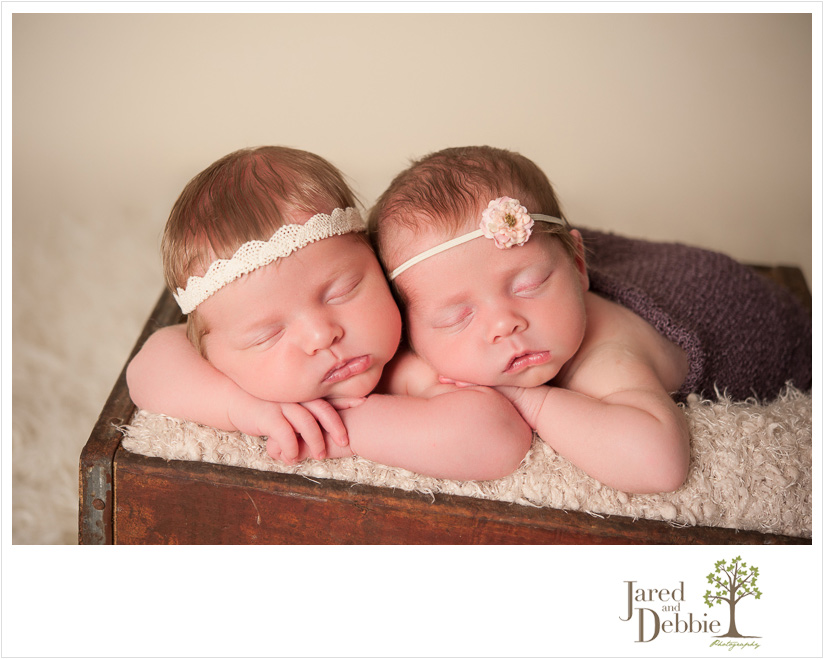 Twin baby girls during photo session with Jared and Debbie Photography