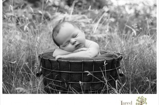 Jared and Debbie Photography Newborn Portraits