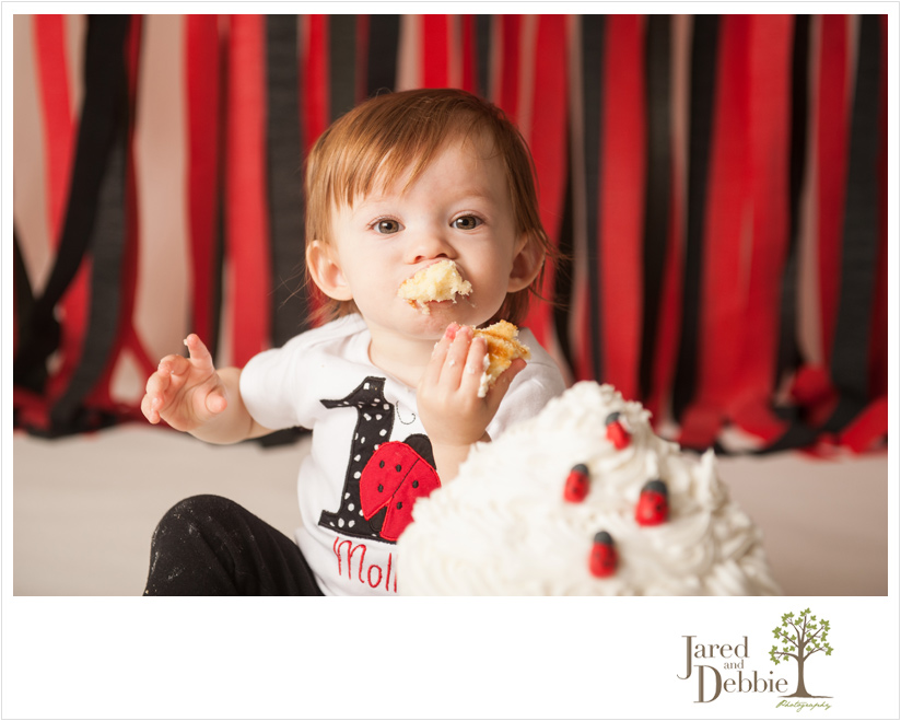 Ladybug theme first birthday session with Jared and Debbie