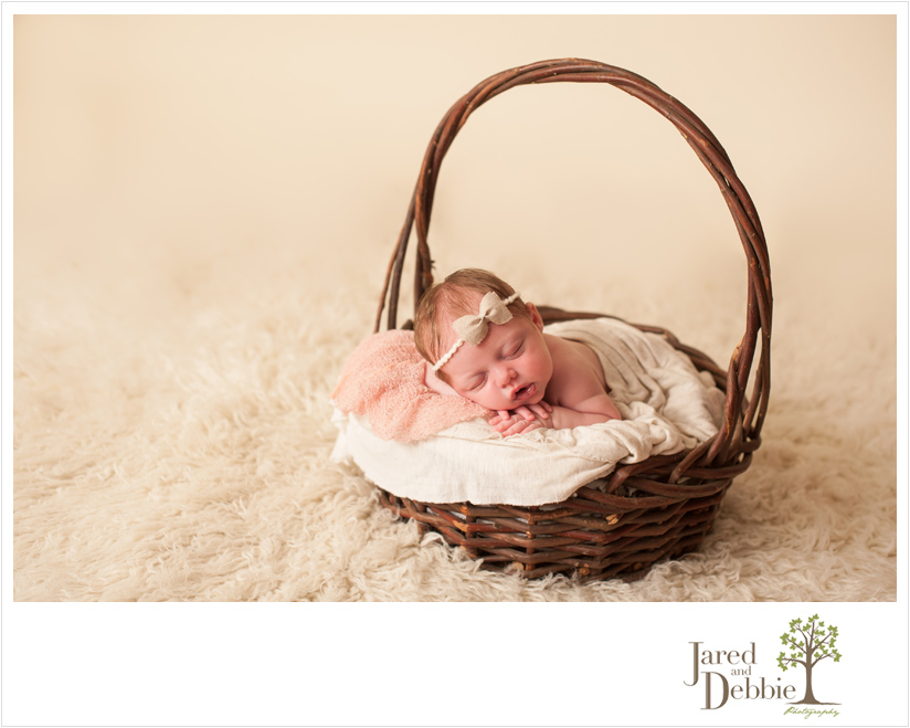 Baby girl in basket during newborn session with jared and debbie